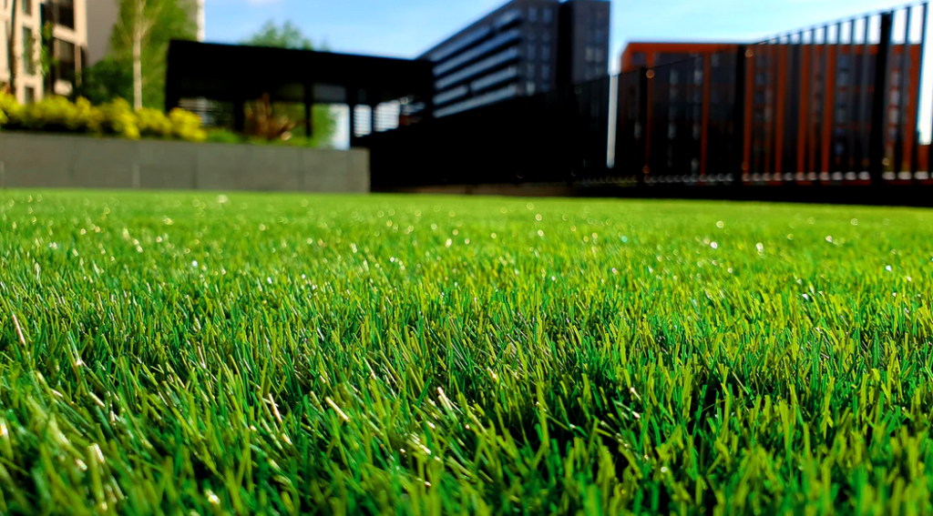 5 top benefits of having a healthy and green lawn